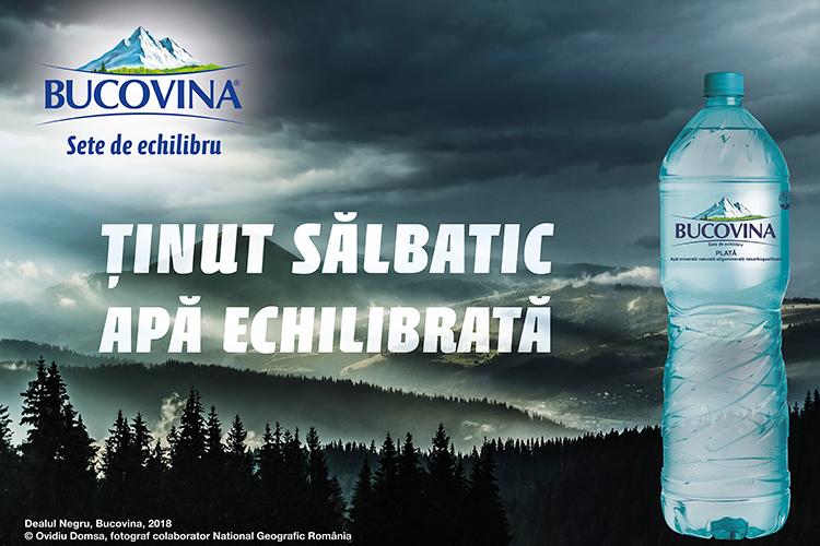 BUCOVINA - O APĂ ECHILIBRATĂ DINTR-UN ȚINUT SĂLBATIC